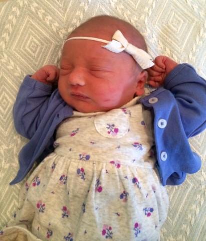 Introducing Baby Hoy!