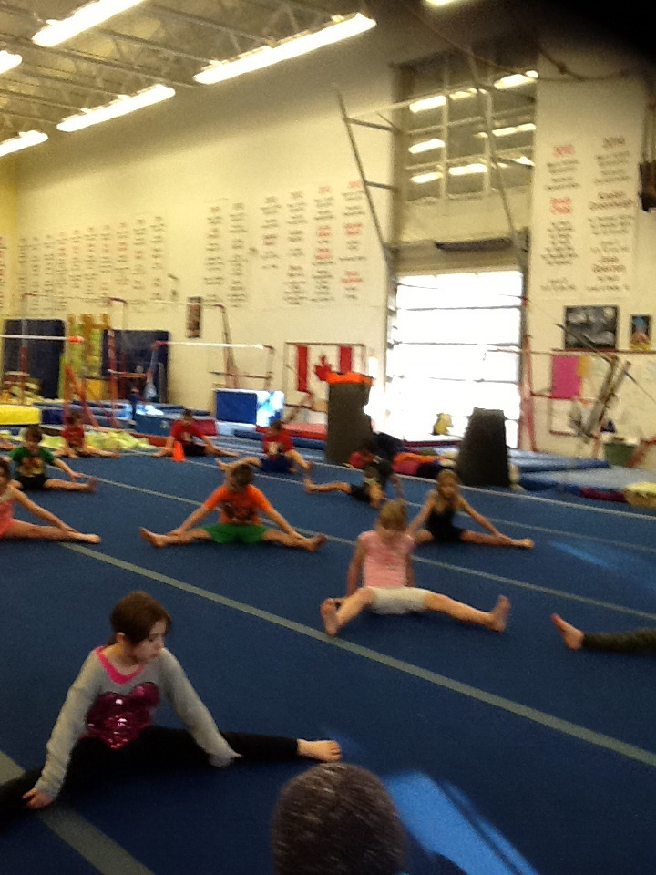 Ms. Mimic's and Ms. Marshall's gr. 1's at Gymnastic Field Trip